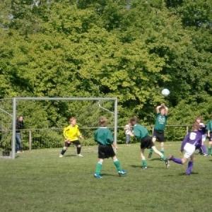 Kampioenschap Wedde E1 (Voorjaar 2010)